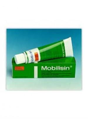 Mobilisin